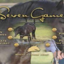 آموزش بازی با اسب