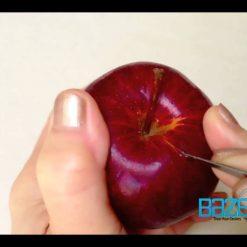 آموزش تزئین میوه های مختلف