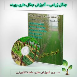 جنگل زراعی - آموزش جنگل داری بهینه