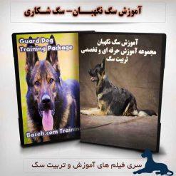 آموزش سگ نگهبان - سگ گارد