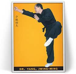 جوینگ مینگ یانگ